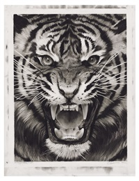 study for roaring tiger by robert longo