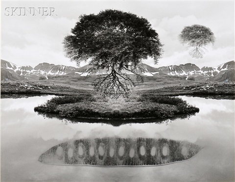 untitled floating tree by jerry uelsmann