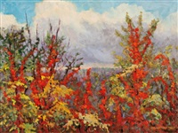 early autumn, gatineau park by bruce heggtveit