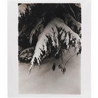 letter to myself 1 by daido moriyama