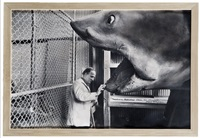 "ingmar bergman and the shark from ""jaws"", hollywood by john bryson"