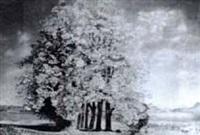 kastanienbaumallee, schönbühl bei luzern by walter küng
