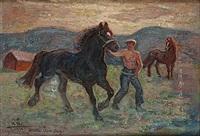 unghästen hämtas från bete by acke aslund