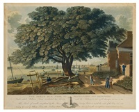 the great treaty elm of shackamaxon (now kensington) under which william penn concluded his treaty with the indians in by george lehman