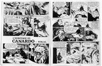 l'héritage de canardo (2 works) by benoit sokal