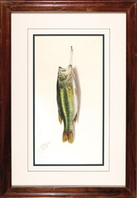 nature morte: large mouth bass by george luis viavant