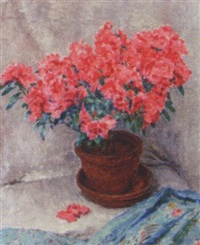 roode azalea: a red azalea in a pot by felicien bobeldyk