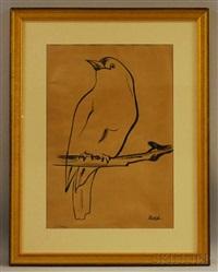 bird by rashid-ud-din