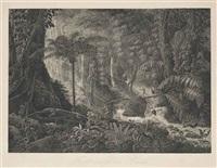 forêt vierge du brésil (after charles-othon-frederic-jean-baptiste, comte de clarac) by claude f. fortier