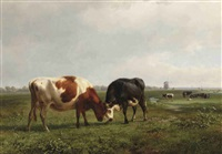 two cows locking horns by jan bedijs tom