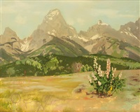 teton meadows by r. brownell mcgrew