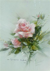 study of a pink rose by vernon ward