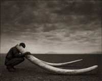 ranger with tusk of killed elephants, amboselli by nick brandt