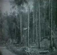 skogsvag med hastskjuts by axel hjalmar lindqvist