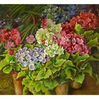 vasi con fiori by miete zangrando