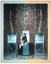 cremaster 3: pentastar by matthew barney