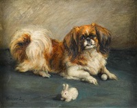 a pekingese playing with a ball by florence jay