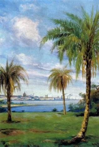 buenos aires weitblick zwischen palmen auf die hauptstadt by juan henrique da ponte
