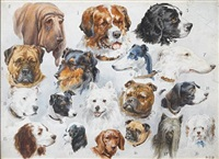 eighteen dogs by stephen t. dadd