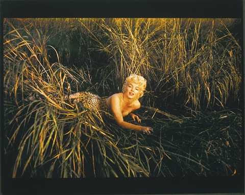 Eve Arnolds 1955 Photo Of Marilyn >> Marilyn In The Bullrushes Mount Sinai 1955 By Eve Arnold On Artnet