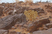 a leopard surveying his territory and a kudu (2 works) by kim donaldson