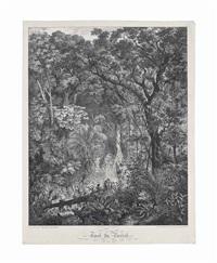 forêt du brésil by johann moritz rugendas