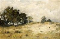 sand drift, drenthe by louis albert roessingh
