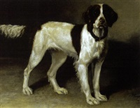 "portrait of a dog named ""lassie"" by franklin whiting rogers"