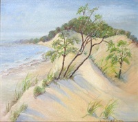 dune landscape by christine hoerman