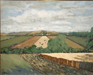 cornfield balrothery by alex mckenna