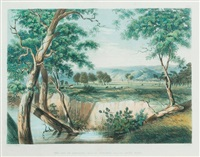 the city of adelaide from the torrens near the reed beds by george french angas