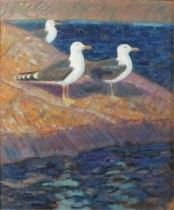 havstrutar på klipphäll by harald wiberg