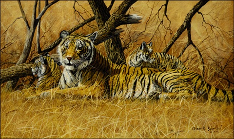 tigress and cubs by gary r swanson