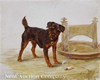 terrier pup with discarded cigar and boot scraper by maud earl