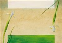 lirio blanco, lirio verde by francisco sebastian nicolau