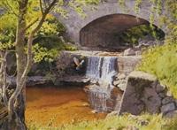 knocknacrow kingfisher (knocknacrow bridge near cushendall) by roy gaston