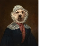 west highland white terrier with bonnet by thierry poncelet