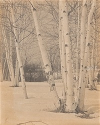 birches in winter by edwin hale lincoln