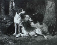 hunting dogs by harry bainbridge mccarter