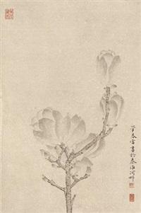 玉兰 镜心 纸本 by guan chunlei