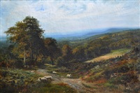 looking across haslemere by george vicat cole