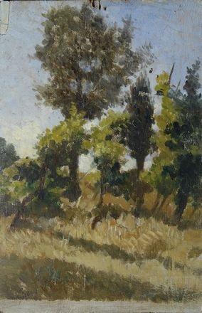 alberi e grano by giovanni fattori