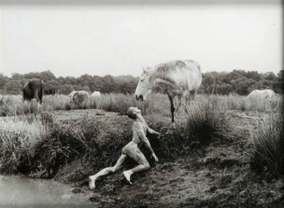 horses of bretagne by oleg kulik