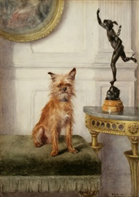 portrait of walter palmer, brussels griffon by frances c. fairman