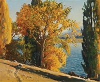 autumn afternoon lake hayes by douglas badcock