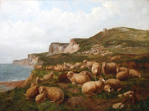 sheep on the cliff tops by lj graham clarke