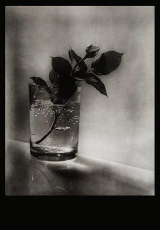 josef sudek profily 1 z praci mistru ceskoslovenskè fotografie portfolio w18 works by josef sudek