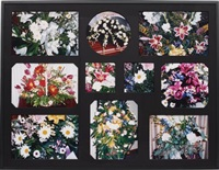 the flowers of upheaval (apart from the whole)(10 works) by robert beck