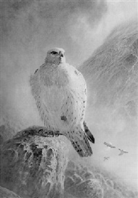 greenland gyr falcon with ptarmigan by peter allis