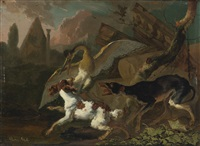 a bird and dog fighting by abraham danielsz hondius